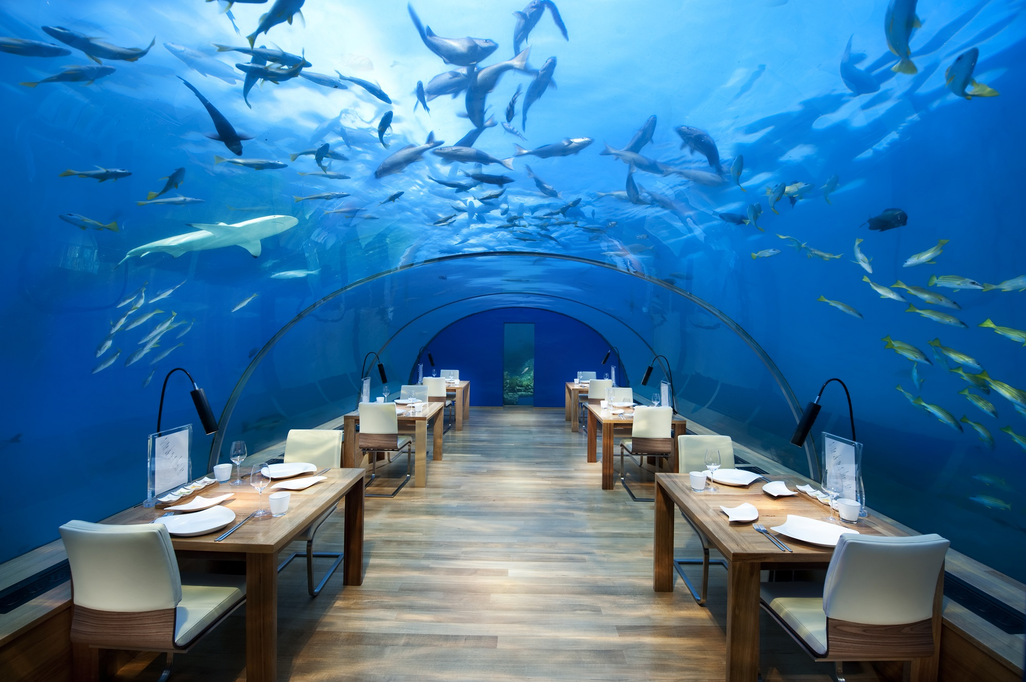 Conrad Maldives_Ithaa Undersea Restaurant High