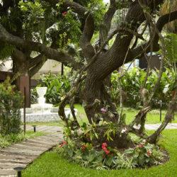 Hotel Santa Teresa Rio MGallery by Sofitel - Jardim principal_IMPRENSA